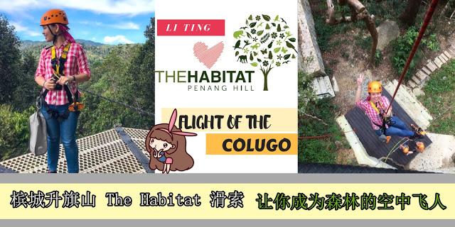 "Read more about the article 想要在森林中当一趟 ""空中飞人"" ?那么就不能错过 The Habitat 滑索啦!"