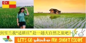 Read more about the article 逃离城市喧闹,到雪兰莪适耕庄赴一趟雪兰莪适耕庄吧!