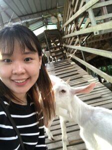 莎能牧羊场