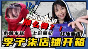 Read more about the article 中国网红李子柒开箱测评 2021 :我买了紫薯米糕、红油面皮、7彩豆奶!虽然包装精美、味道好价位有点高啊!