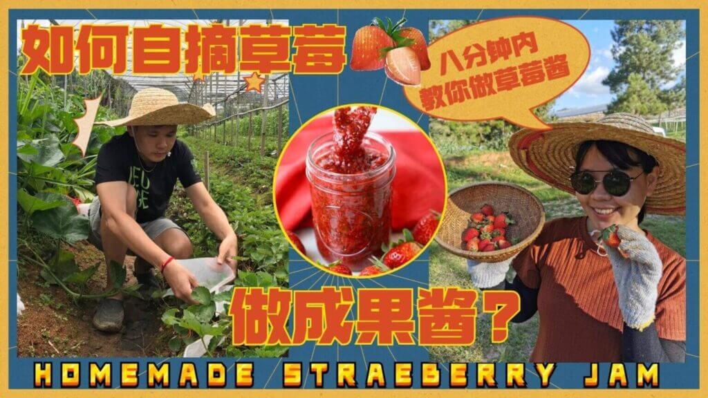 Read more about the article strawberry jam recipe草莓酱的做法2021: 从和平农场内新鲜采摘后制作成最健康的自家草莓酱!